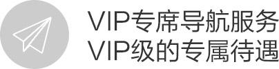 vivo Xplay3S, VIP专席导航服务 VIP级的专属待遇